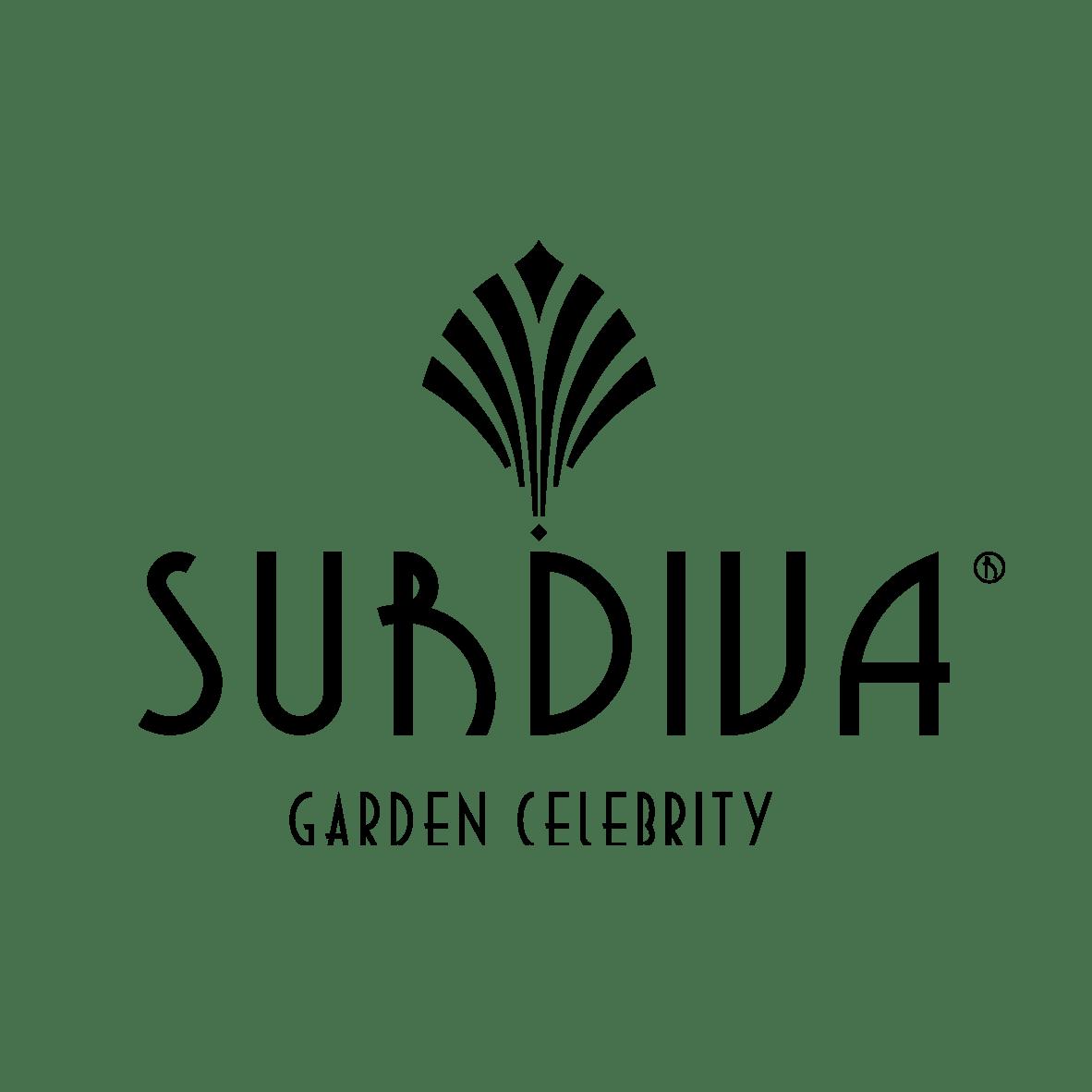 Surdiva logo black