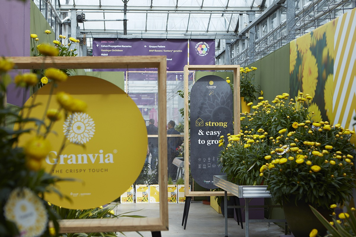 Events | Granvia® Gold | MNP / Suntory