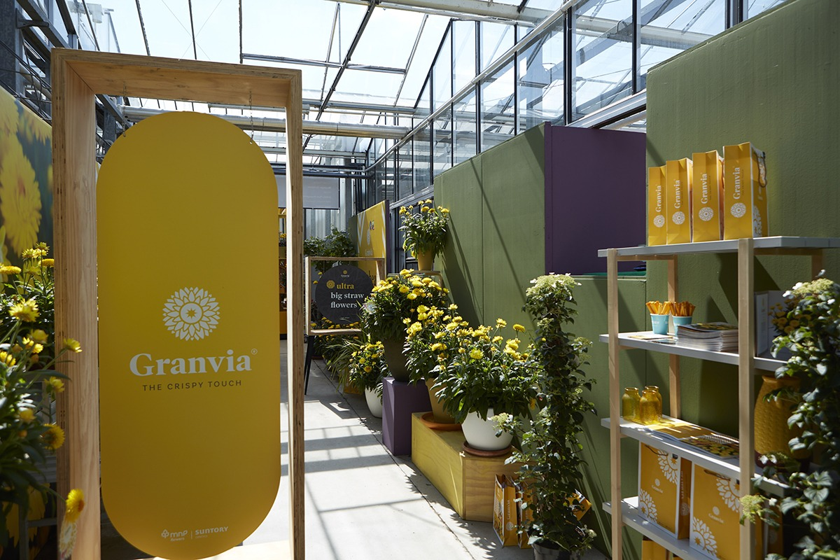 Granvia® Gold | MNP / Suntory