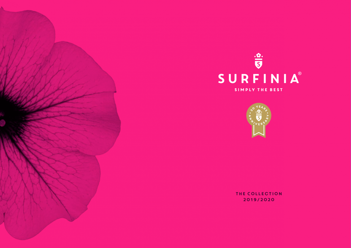 Surfinia® the collection | MNP / Suntory