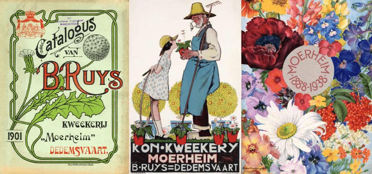 Nursery Moerheim | MNP / Suntory