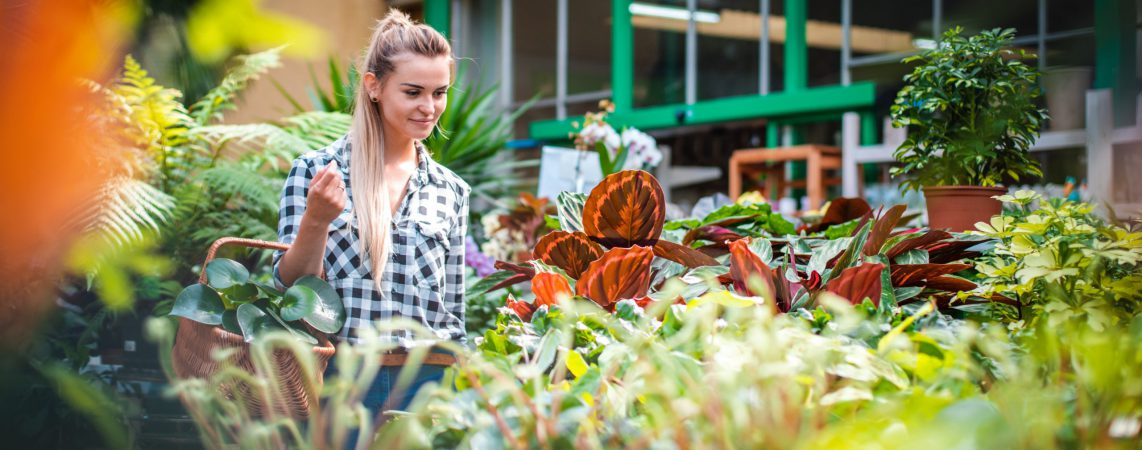 Customer woman in garden center looking for plants